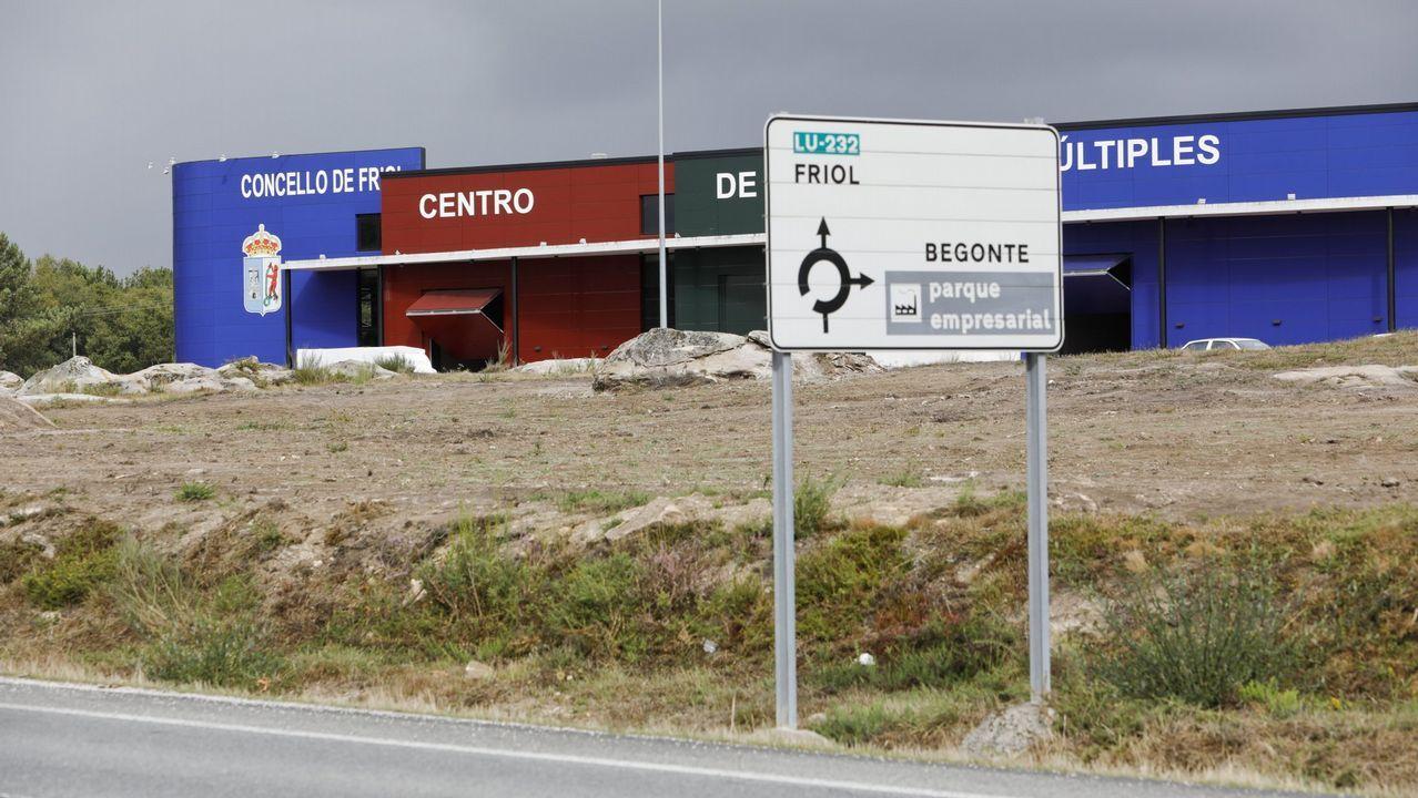 La carnicería Brais, en Lugo, vende hamburguesa de vaca de raza cachena.