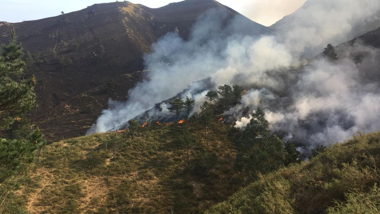 Incendio forestal en Parres