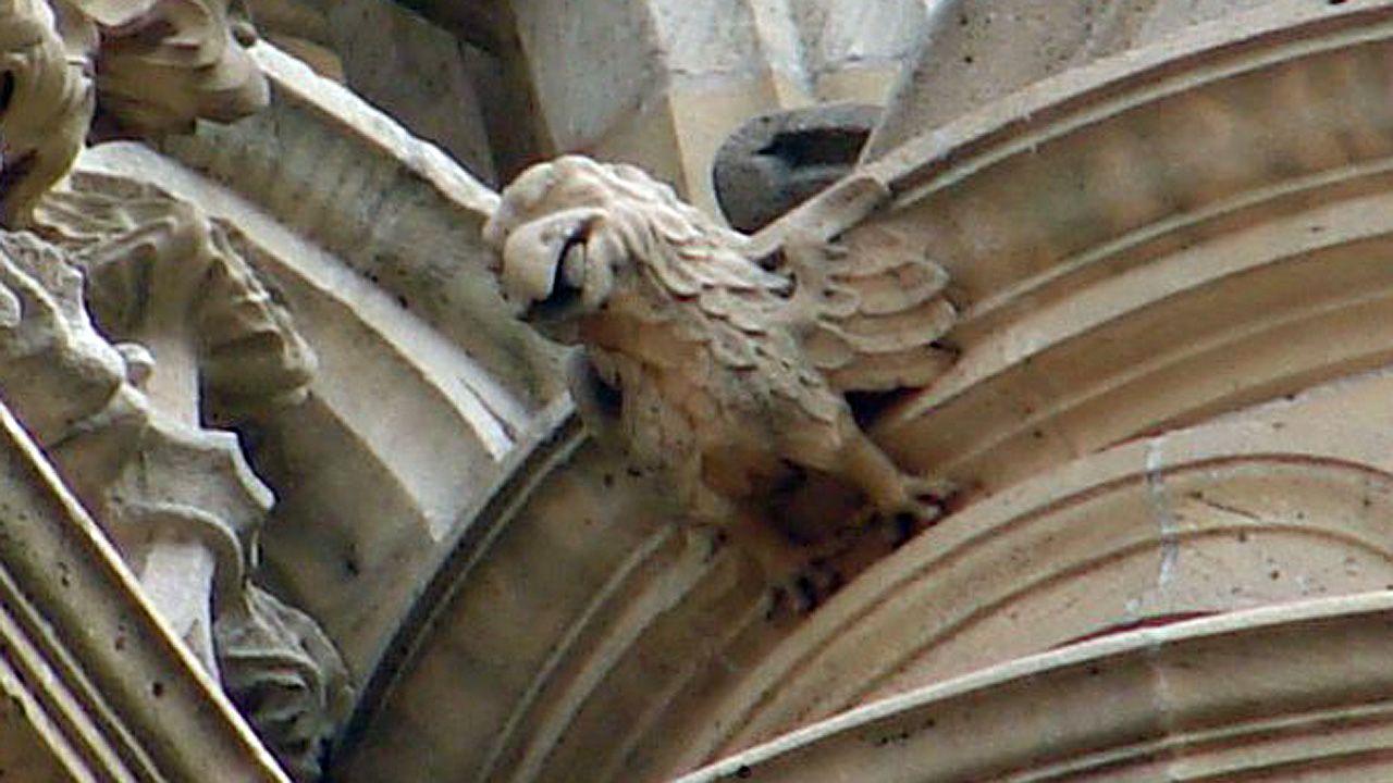 El águila es un animal recurrente en la iconografía medieval, en especial en forma de gárgola. Podría ser un vigilante del templo, una figura protectora. Catedral de Oviedo