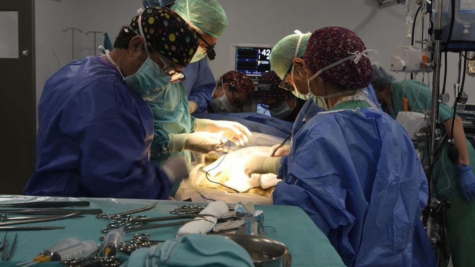 Carmen Rivero, coordinadora de trasplantes