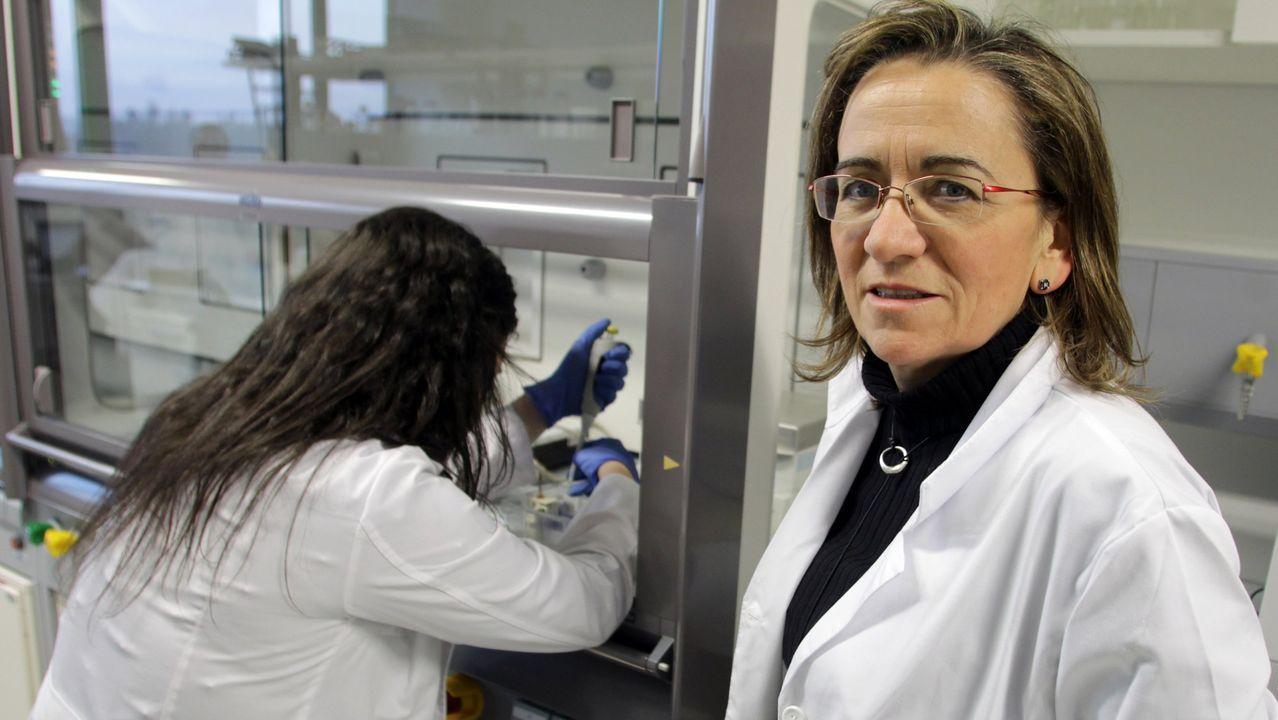 María José Alonso lidera el proyecto desde el Cimus de la USC