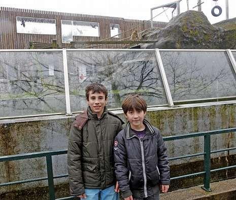 Mateo (izquierda) y Jero volvieron a Vigozoo a revivir la fuga ante el recinto de «Nano».