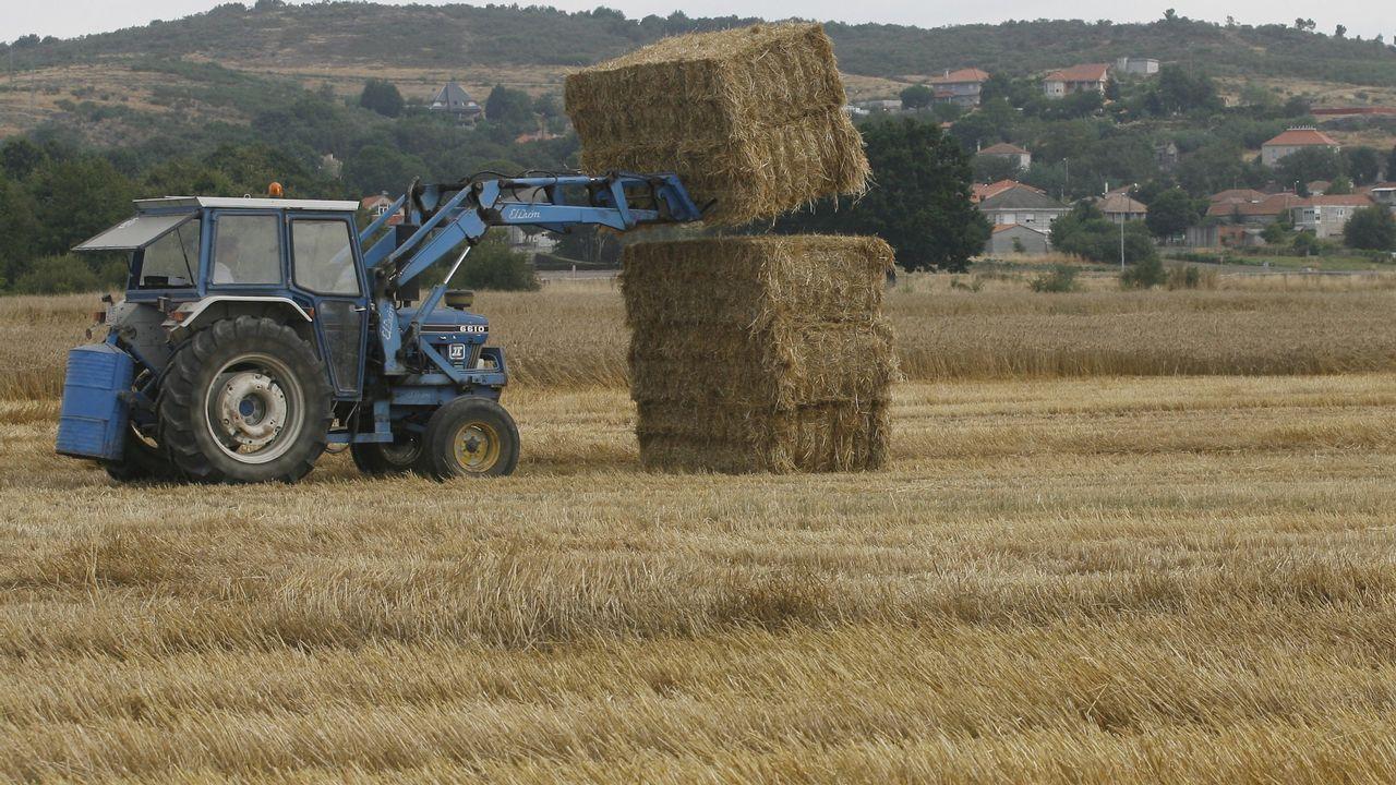 Un tractor, en Vilar de Santos (Ourense)