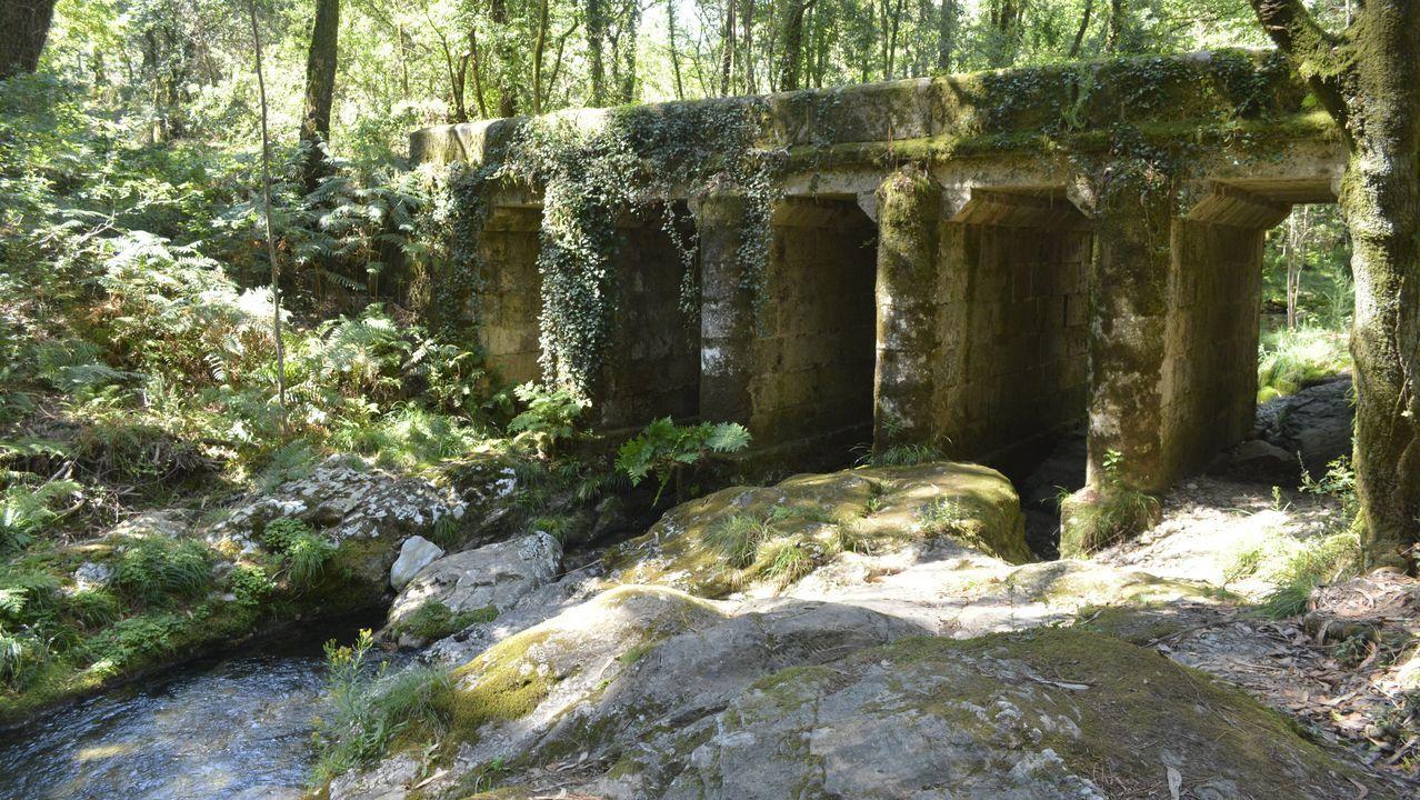 Descubre aquí la ruta del río Lérez!!.Hospital Clínico de Santiago