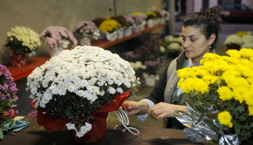 Cambre disfruta del Samaín.Las plantas son una opción económica y lo que más se compra en las floristerías estos días.