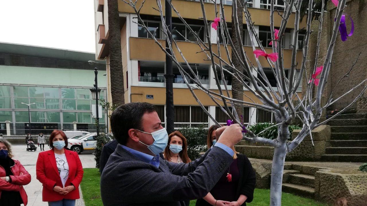 La Diputación de A Coruña conmemora el 8M con un árbol de la igualdad