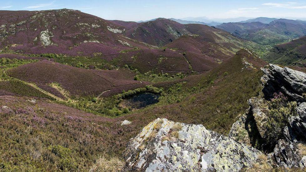 Vista de la laguna, prácticamente seca, desde el lugar de O Mallón
