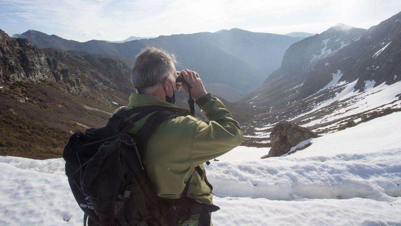 Un agente de Medio Ambiente realizando observación en el Mustallar