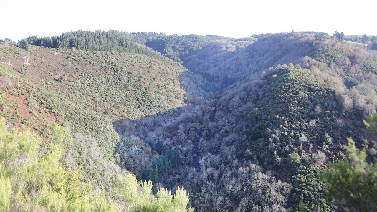 Ao largo da ruta pódese ver o monte entre Arquide e Vilarxubín