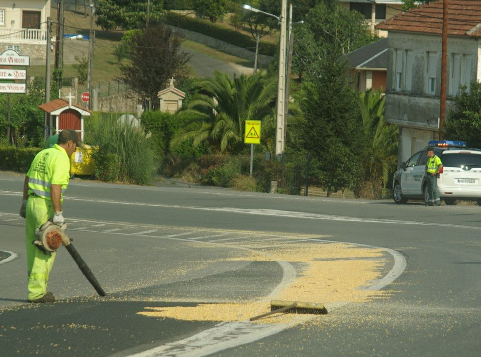 El maíz invadió el asfalto en la zona de Queirís.