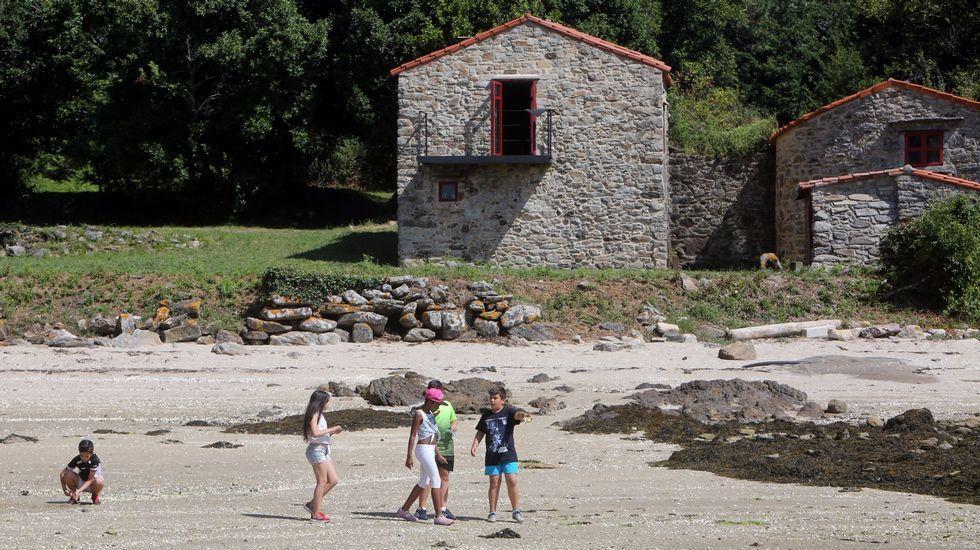 Visita escolar a Cortegada, que forma parte del parque nacional de las Illas Atlánticas