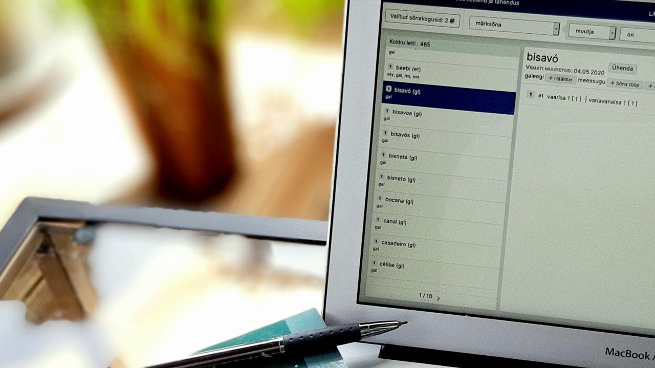 Imaxe da consulta en liña do dicionario estoniano-galego