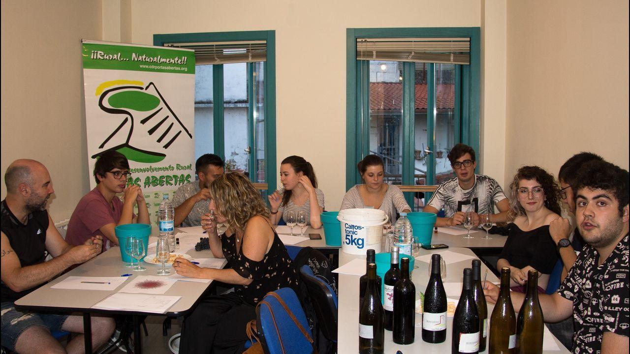 La cosecha de la uva en O Salnés.Una cata de vinos de Ribeira Sacra para los premios Gallaecia, en una imagen de archivo