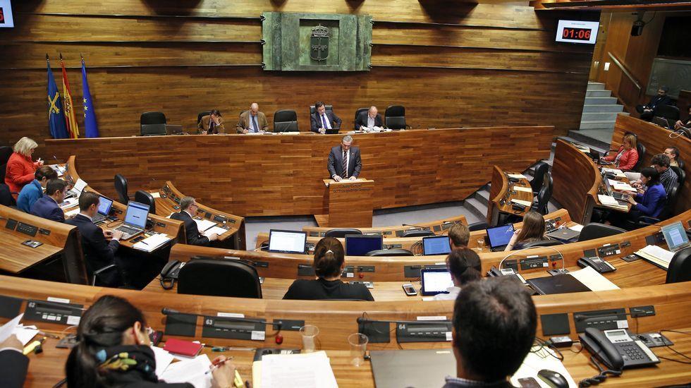La consejera de Hacienda, Dolores Carcedo, entra en la Junta General del Principado con el proyecto de presupuestos para 2017.Fernández, en una votación en la Junta