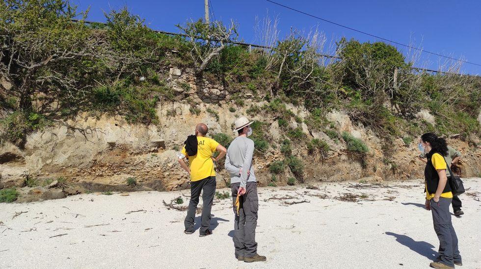 Los yacimientos romanosimprescindibles de la provincia de Pontevedra.Programa de voluntariado ambiental en la isla de Ons
