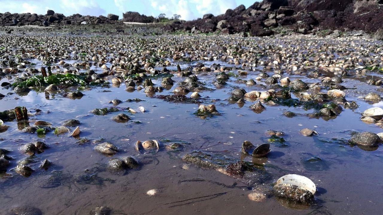 Manchas en la playa de San Lorenzo, en la desembocadura del río Piles. ARCHIVO