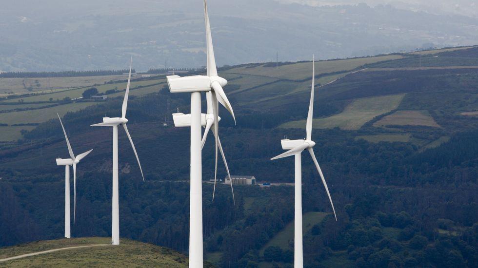 La Junta de Castilla y León pide «la dimisión o el cese» del ministro de Industria.El sector ha recurrido ante el Supremo la orden con el recorte a renovables.