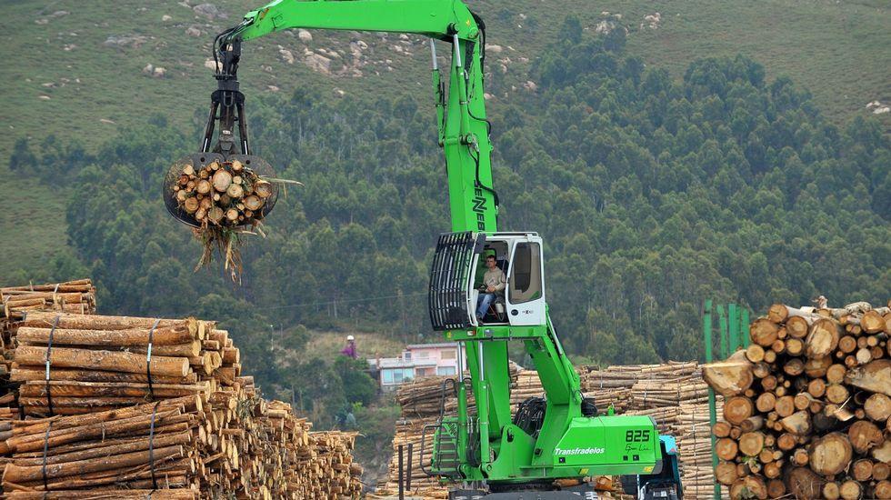 Descarga de madera en el puerto exterior de Ferrol