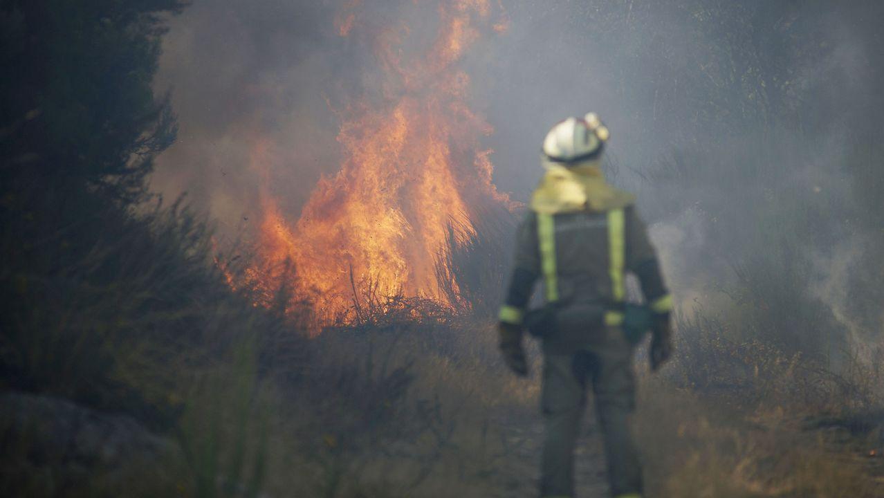 Imagen de archivo de un incendio forestal