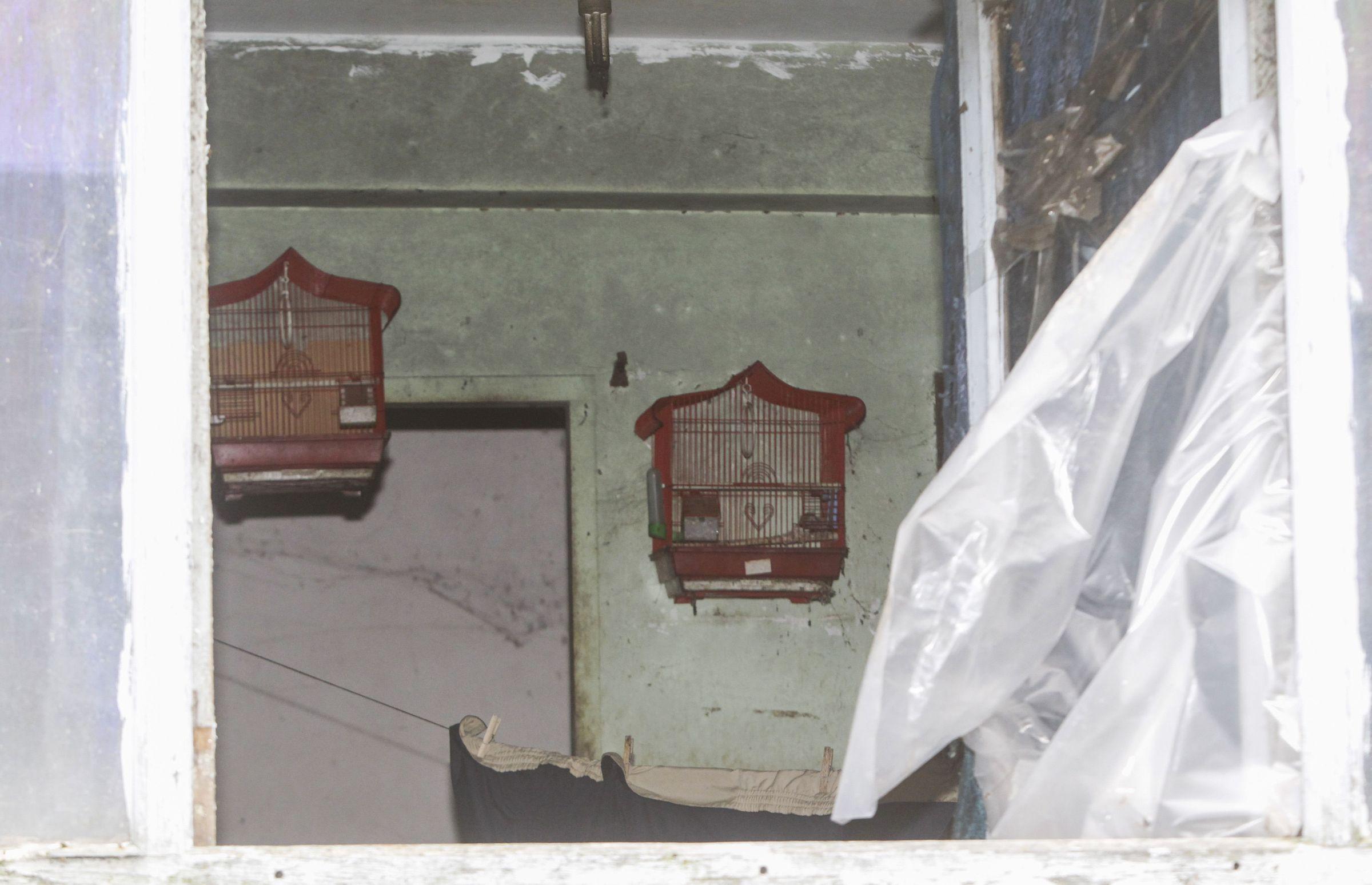A través de una ventana rota de la vivienda de la mujer fallecida se pueden ver jaulas en el interior de la casa