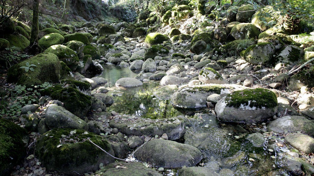 Sobrevivir en el país de los mil ríos.Imagen con el cartel de la próxima cita alemana sobre cambio climático