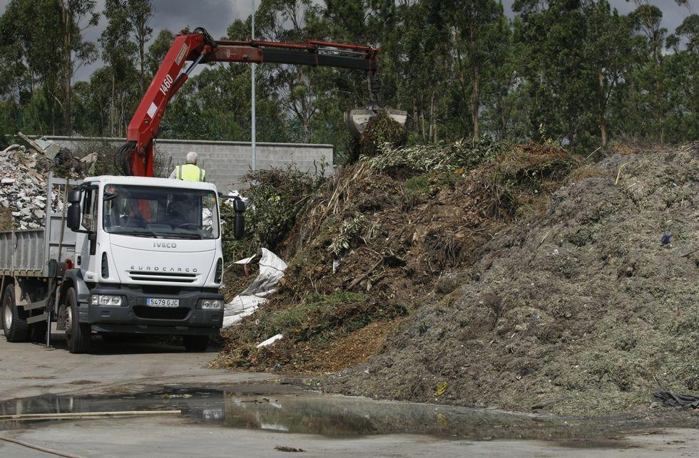 En Pinar do Rei los restos de limpiezas del año pasado se mezclan con los de esta temporada.