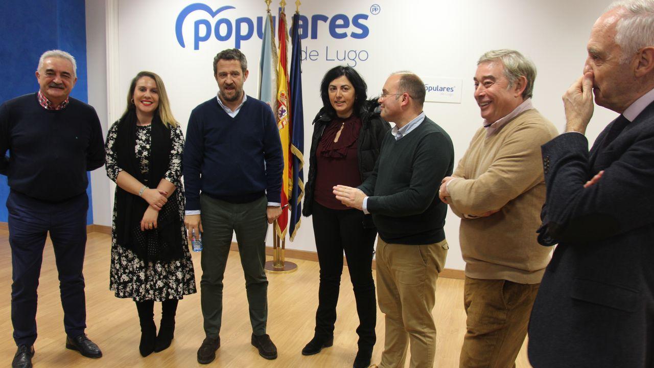 El presidente de la Diputación, José Tomé, acompañó a los miembros del comité de empresa de Alcoa que presentaron en la Diputación las alegaciones al estatuto electrointensivo