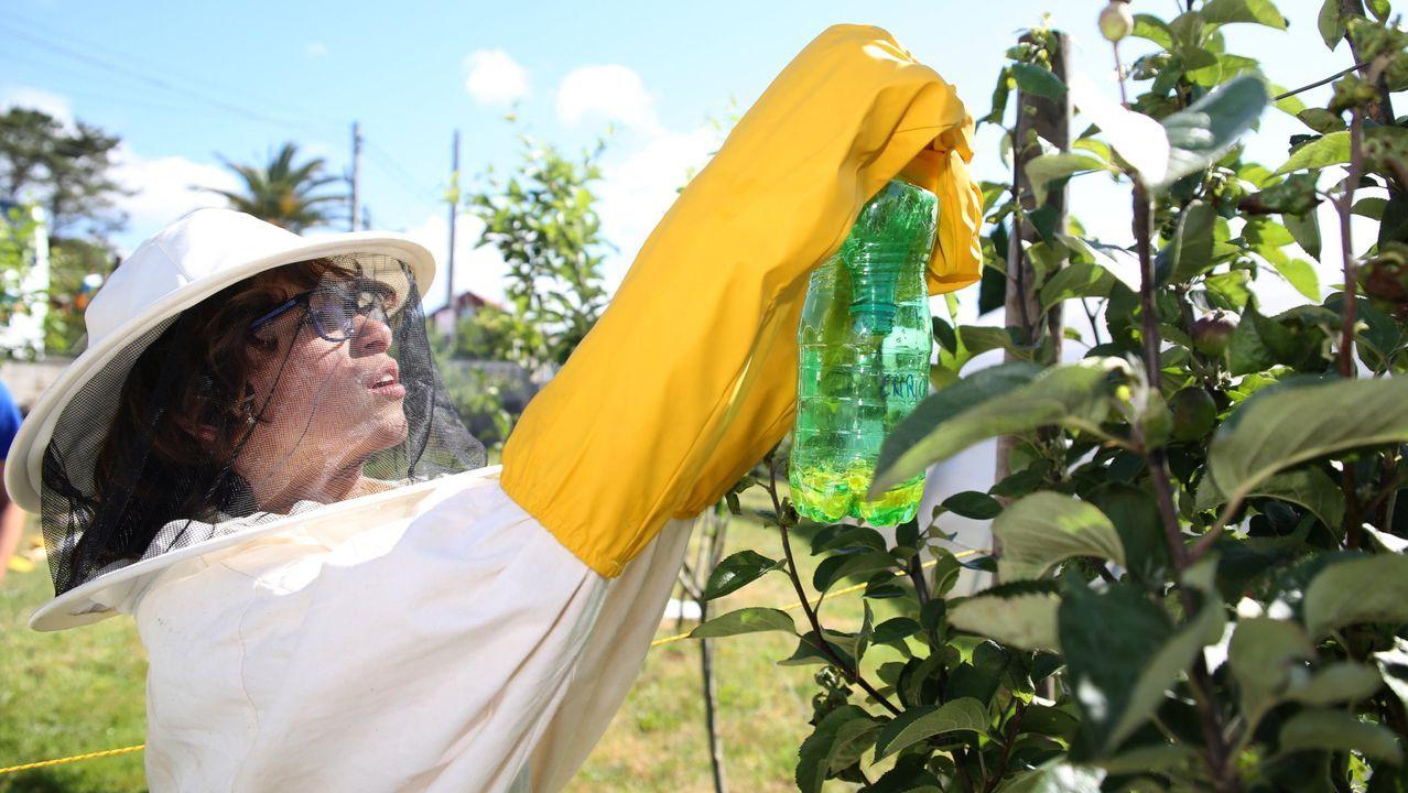 En el colegio de primaria Xosé Neira Vilas de Gondomar se instalaron purificadores de aire en cada aula comprados entre todos: familias, profesores y trabajadores