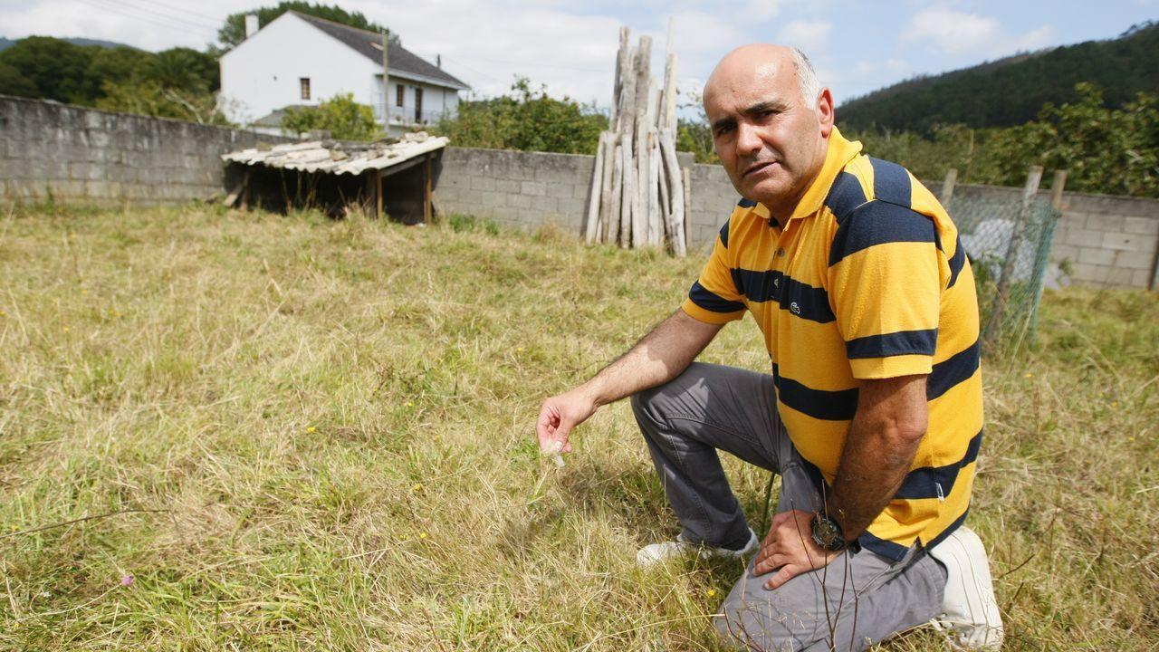 Luis Girón, en la finca de una casa habitada en Landrove donde el lobo mató cuatro ovejas
