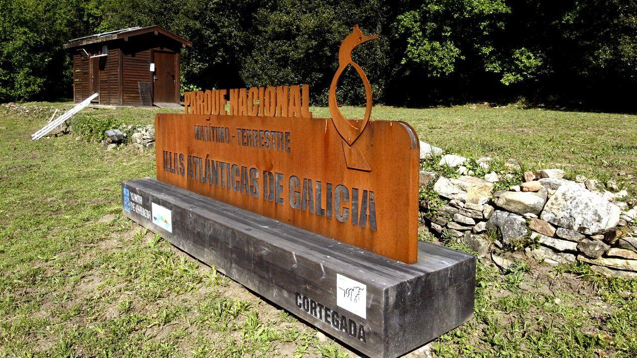 Celebración do 1º de Maio en Arousa.La vacunación masiva contra el covid continuó ayer en el recinto ferial de Pontevedra. En la imagen, personal preparando los viales