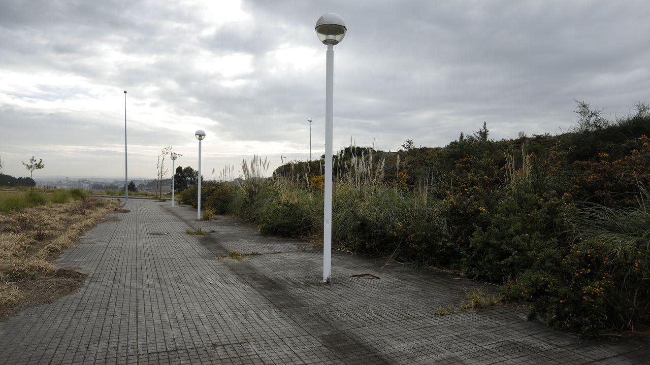 Un polígono industrial plagado de maleza.A la izquierda se observa el panel de cestería creado por Idoia Cuesta para el Zara Home de A Coruña