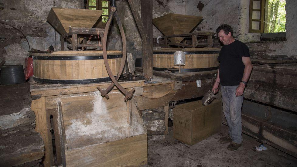 El molino de la Casa de Olmo todavía sigue moliendo, pero ahora solo produce harina para alimentar a los animales