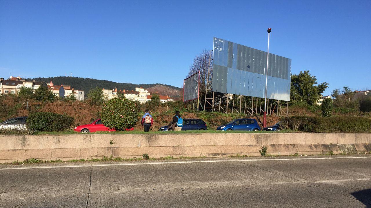 Carnaval en A Coruña.Paso de peatones en la avenida de la Trinchera de Ferrol
