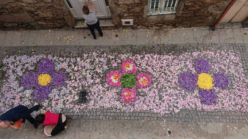 Alfombra floral en Fisterra