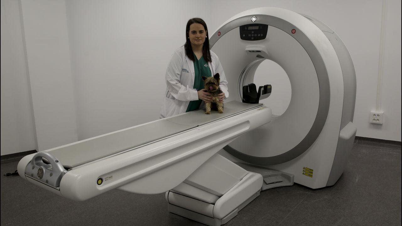 HOSPITAL PARA MASCOTAS 4 DE OCTUBRE Paloma González de Ramos, responsable del centro veterinario