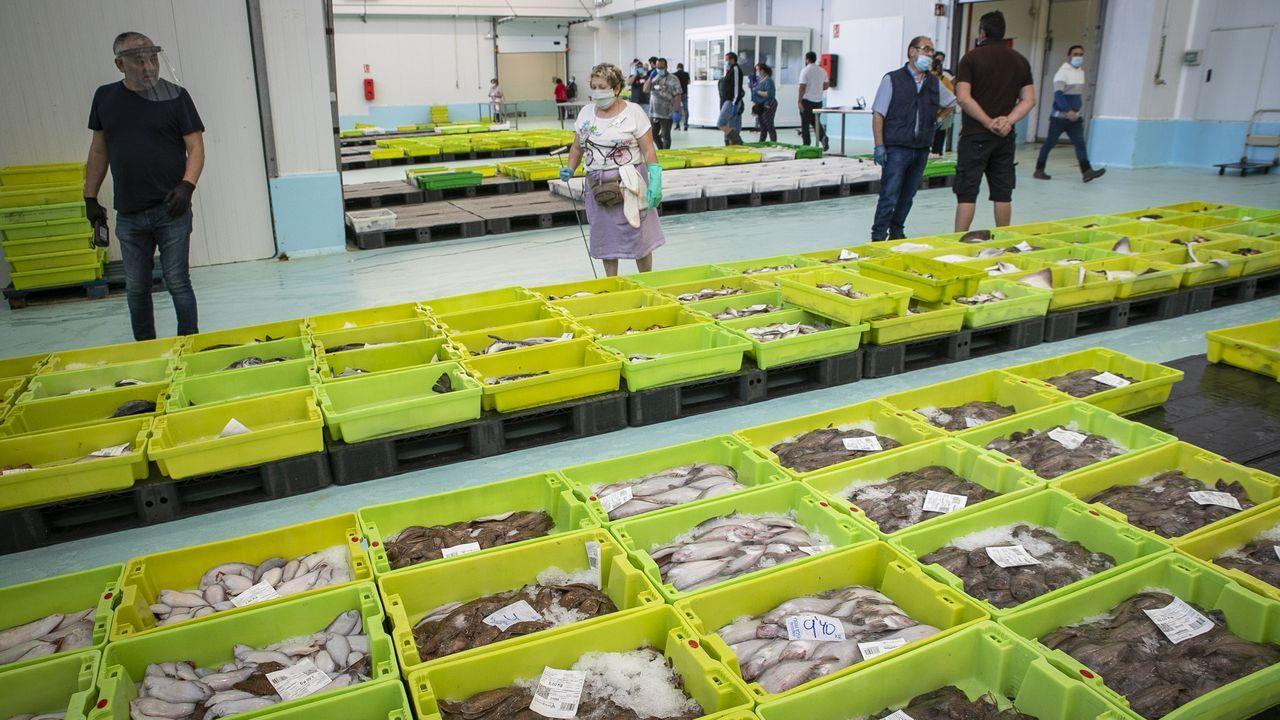 Tras la subasta en lonja, como esta en Ribeira el pasado dia 25, al pescado se le aplica un IVA del 10 %