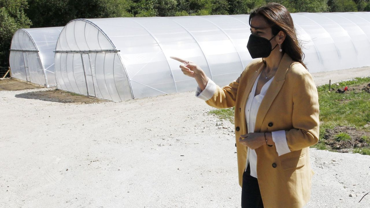 La directora xeral de la Axencia Galega de Desenvolvemento Rural, Inés Santé, visitando el Proxecto Horta, en Ferrol, con parcelas del Banco de Terras