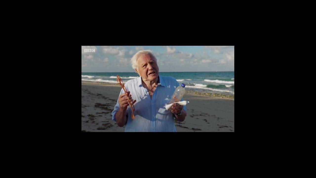 En el último episodio de Blue Planet 2, Attenborough alerta sobre la amenaza de los plásticos
