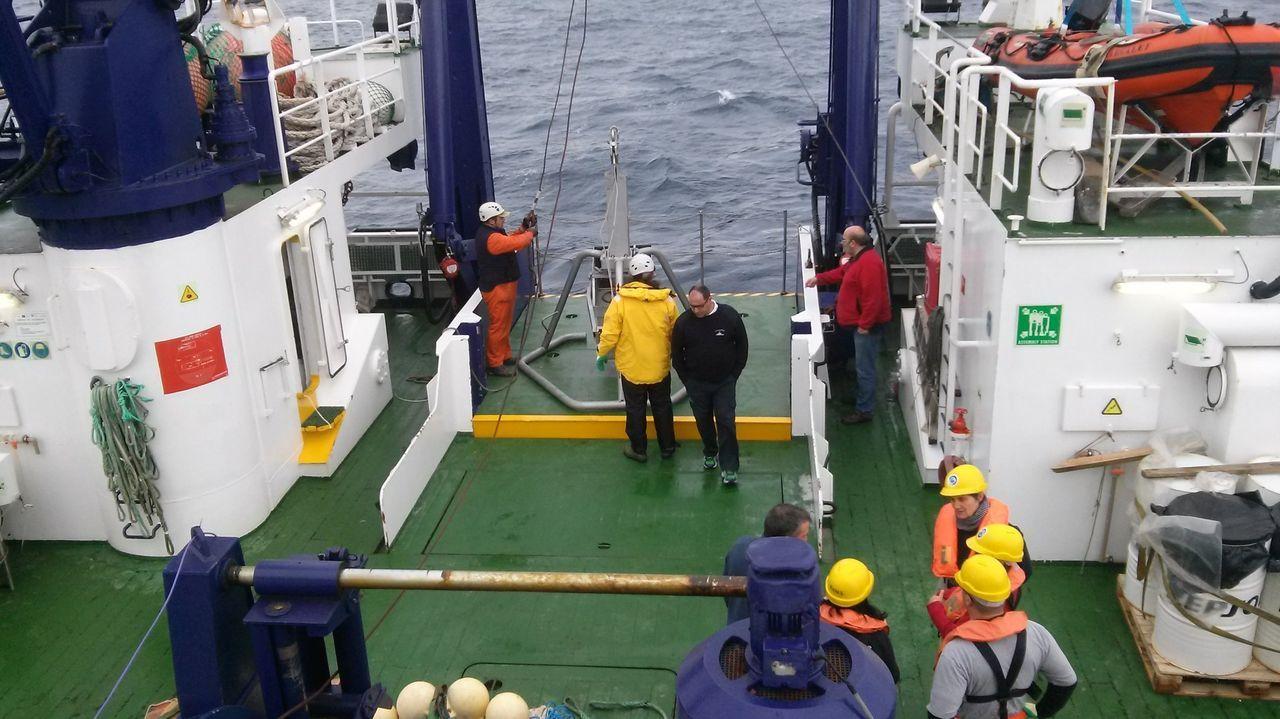 Cerqueros atracados en el puerto de A Coruña, en una imagen de archivo