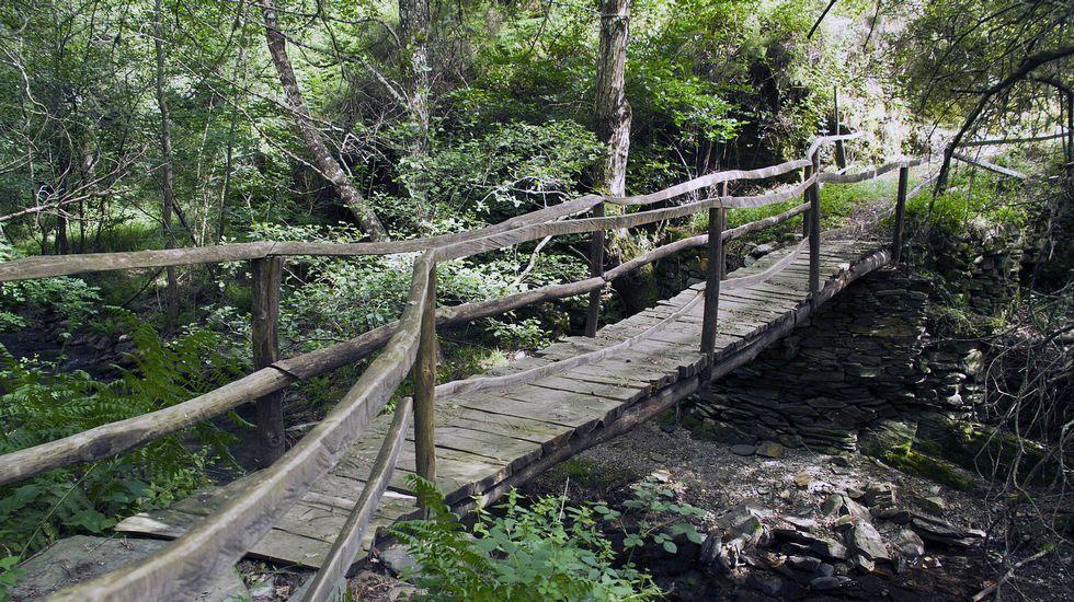Puente de madera sobre el río Soldón en la ruta del Camiño Ferradal, en Quiroga