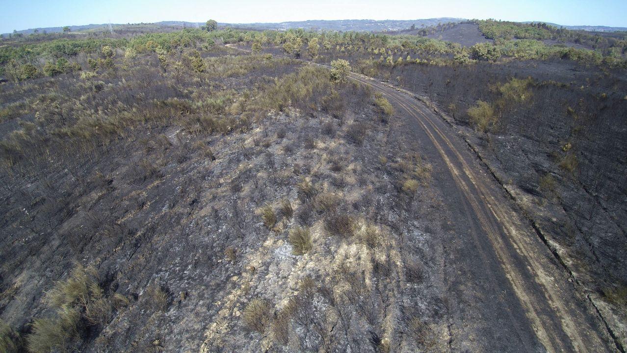 Otro aspecto de los terrenos quemados en Mañente, en el municipio de Pantón
