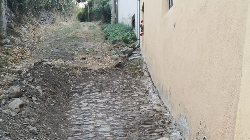 Recogida de la aceituna en el municipio de Quiroga.El pavimento original se conserva en su totalidad cubierto por una capa de tierra
