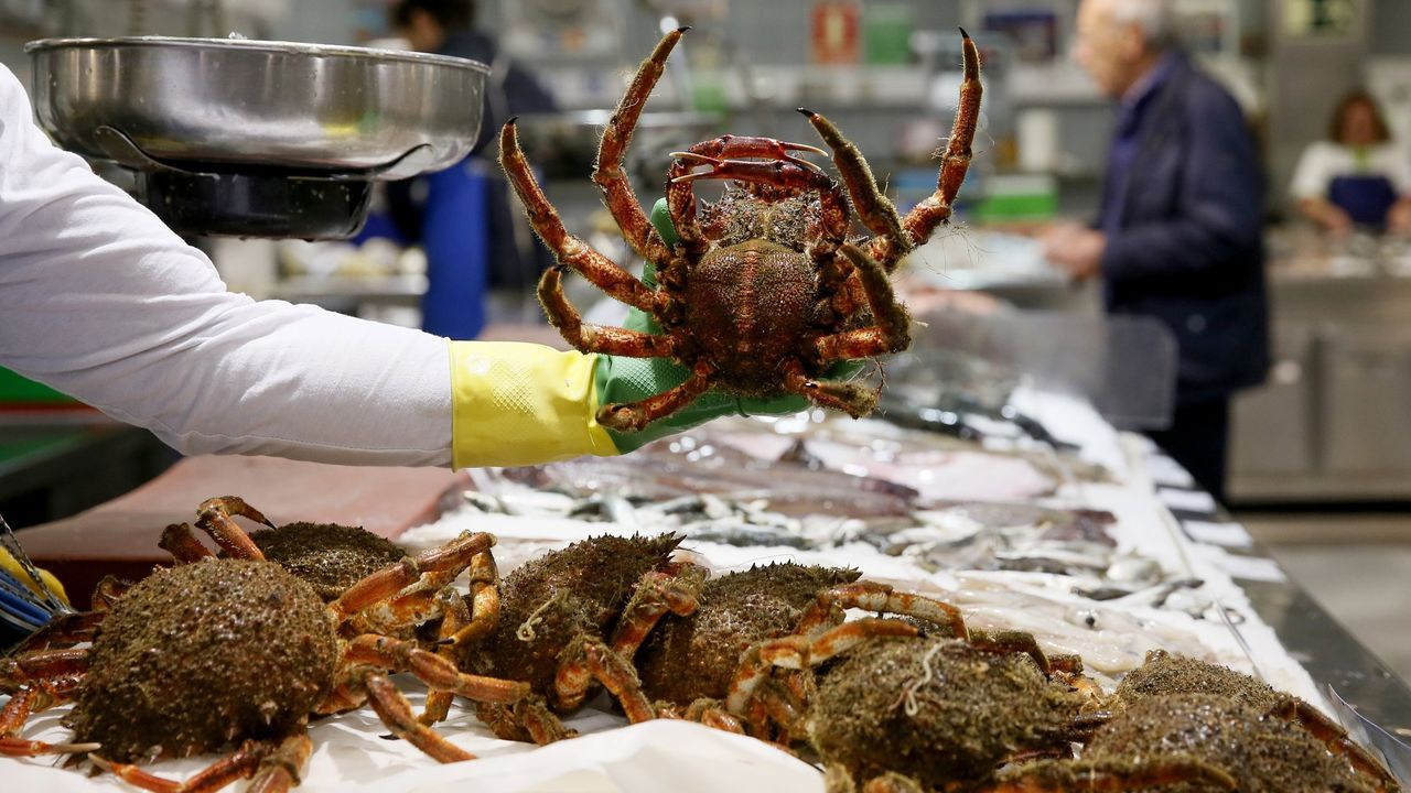 Una amplia variedad de pescados y mariscos frescos ofrecía este miércoles Peixería Grallal, en Covas (Viveiro)