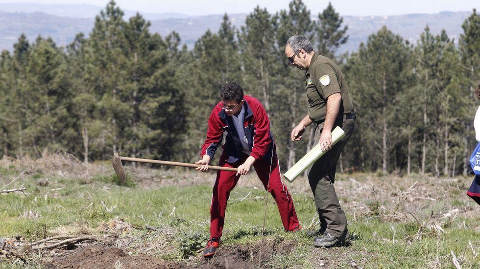 Os estudantes regaron ás árboes que plantaron no cimo do Marroxo