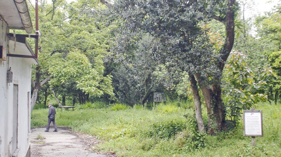 El borrador no consigna fondos para recuperar y abrir el parque botánico del Montón