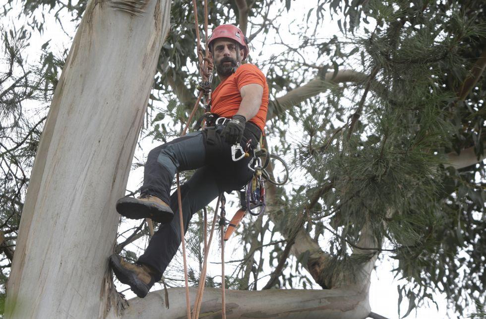 La técnica de trepa a los árboles más que la preparación física es clave en la labor del biólogo.