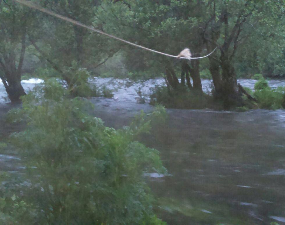 El pescador salió del río utilizando la cuerda como tirolina.