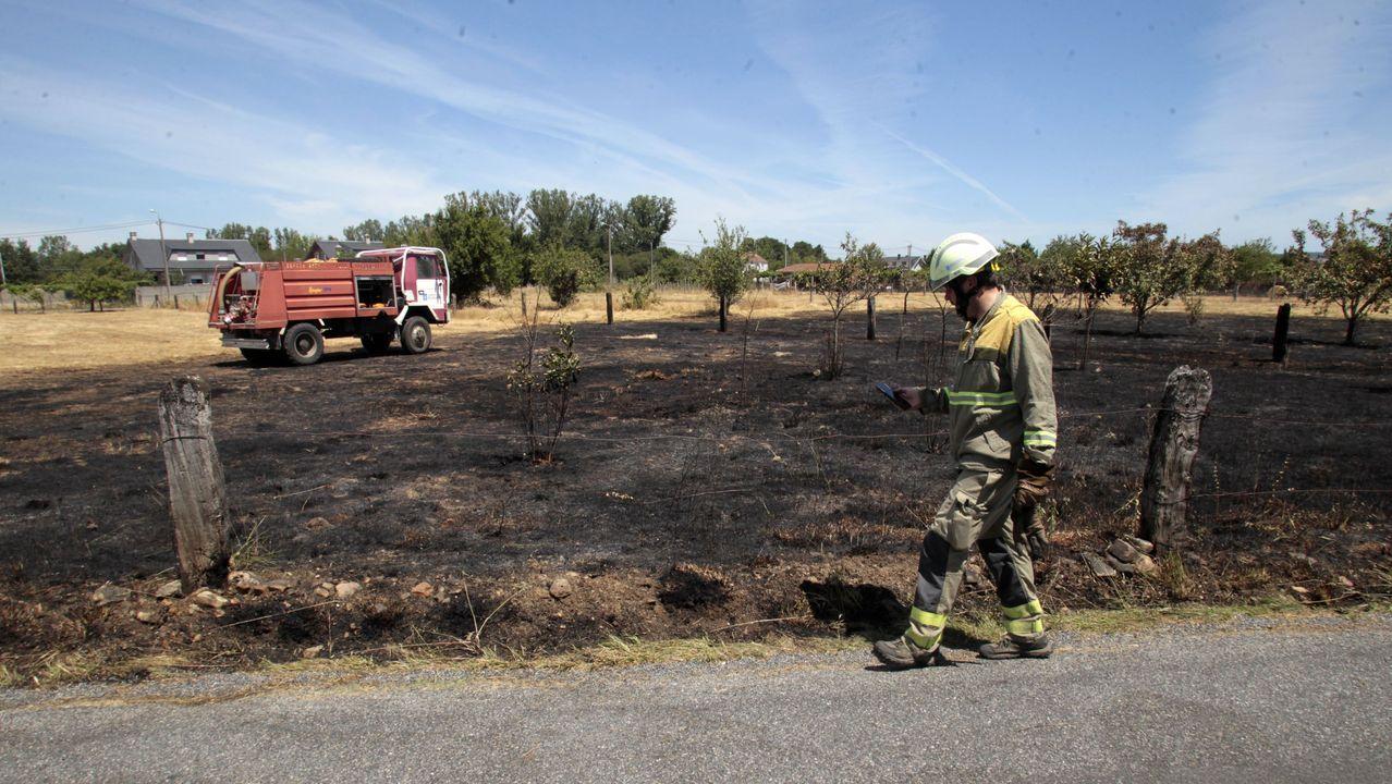 Los bomberos apagaron el incendio antes de que se propagase a otras fincas