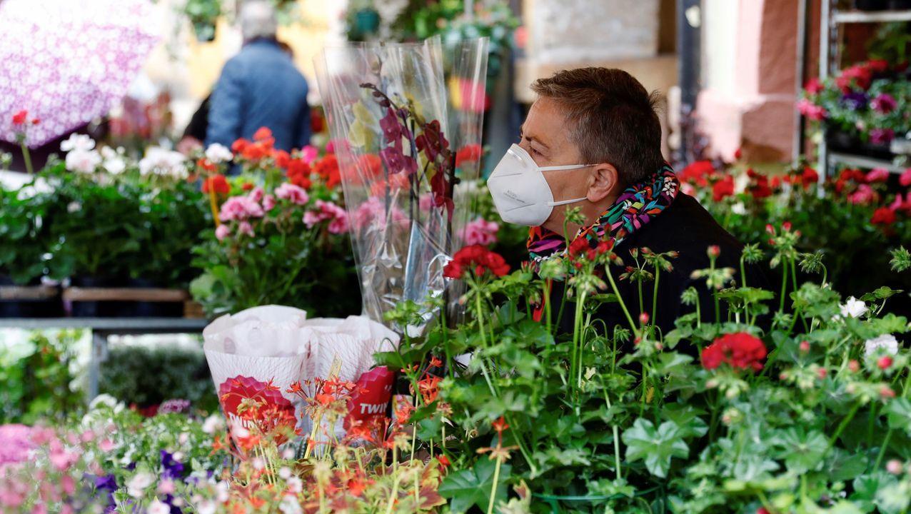 Vendedora de flores en Oviedo.
