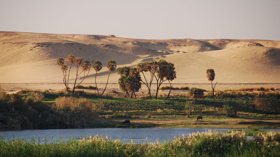 Contraste entre las riberas del Nilo y las arenas del desierto por el que discurre
